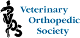Veterinary Orthopedic Society